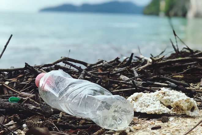 The Far-Reaching Impact of Mismanaged Trash