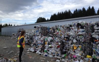 5 Little Changes to Make a Big Difference in Reducing Waste